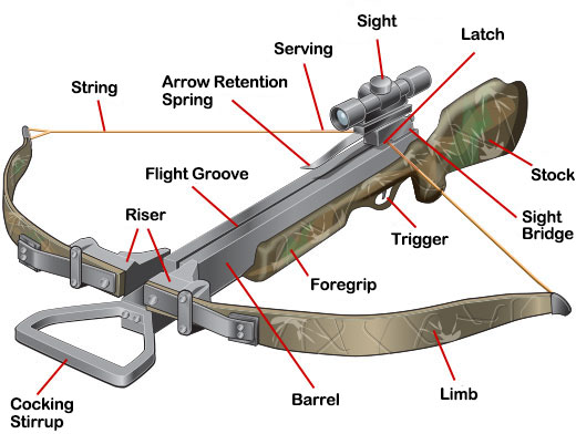 Recurve Crossbow Parts